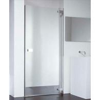 Душевая дверь Provex E-lite 0005-EN-05-GL R 100 см