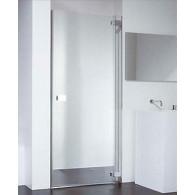 Душевая дверь Provex E-lite 0004-EN-05-GL R 90 см